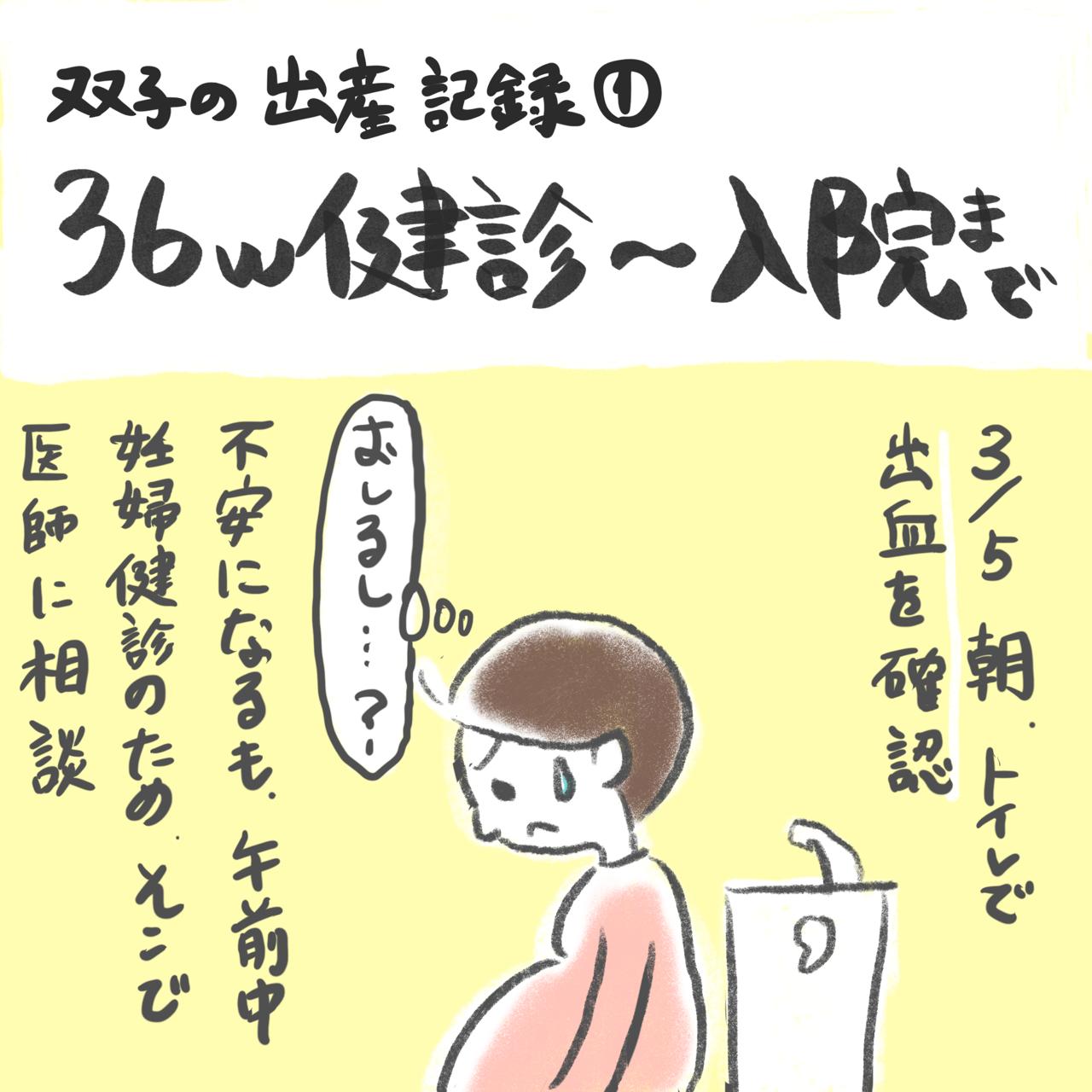 3月5日、トイレで出血を確認。不安になるも午前中が健診のため、そこで医師に相談